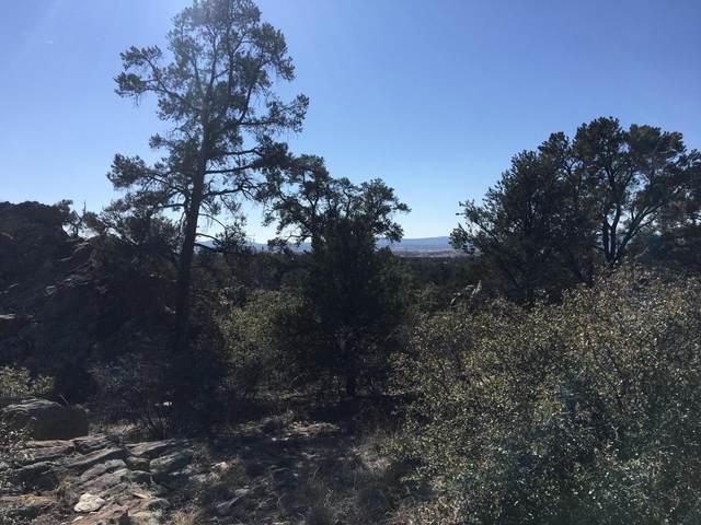 16300 N Petroglyph Road, Prescott, AZ 86305 (#1027746) :: West USA Realty of Prescott
