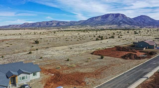 13110 E Musket Road, Prescott Valley, AZ 86315 (#1027765) :: Shelly Watne