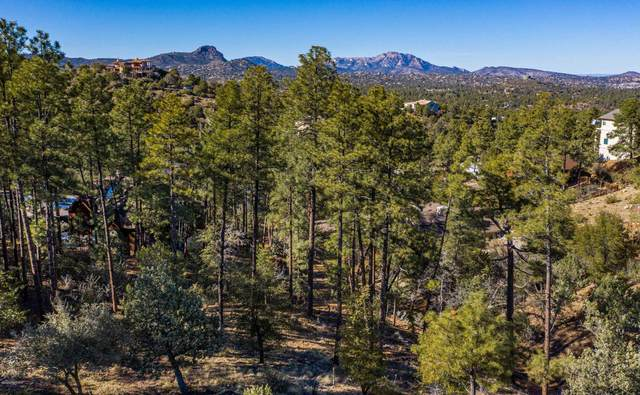 1407 E Valley View Road, Prescott, AZ 86303 (#1027902) :: Shelly Watne