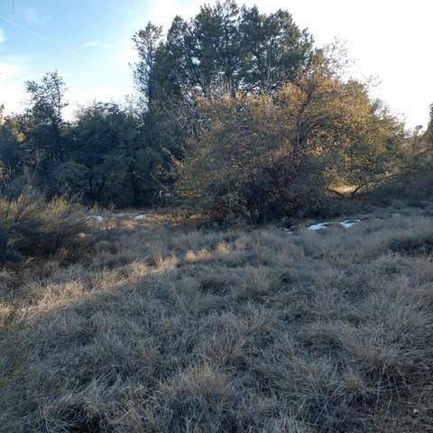 1030 N Rose Quartz Drive, Prescott, AZ 86303 (MLS #1028001) :: Conway Real Estate