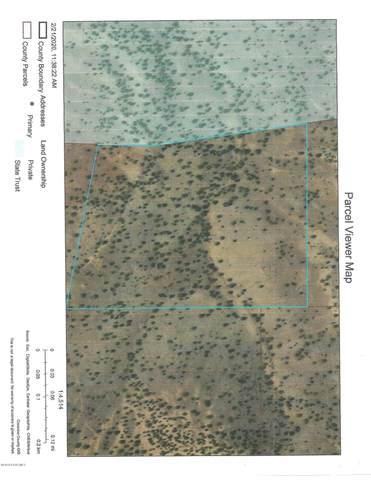 43 Juniperwood Ranch, Ash Fork, AZ 86320 (#1028062) :: Shelly Watne