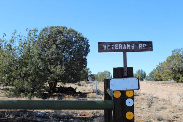 62850 N Flaming Star Drive, Seligman, AZ 86337 (#1028122) :: Shelly Watne