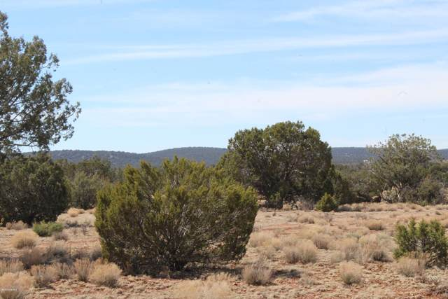 Tbd Lot 66, 67 And 78, Seligman, AZ 86337 (MLS #1028208) :: Conway Real Estate