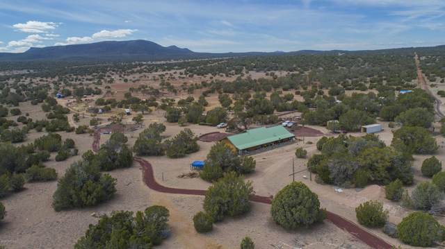 43055 W Layne Paulson Drive, Seligman, AZ 86337 (#1028430) :: HYLAND/SCHNEIDER TEAM