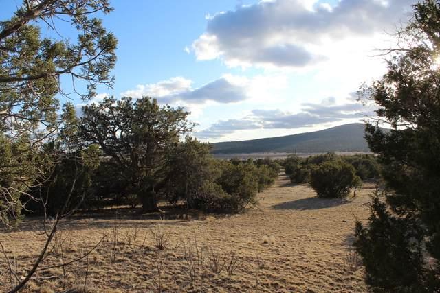 47475 By Gum Way, Seligman, AZ 86337 (#1028458) :: HYLAND/SCHNEIDER TEAM