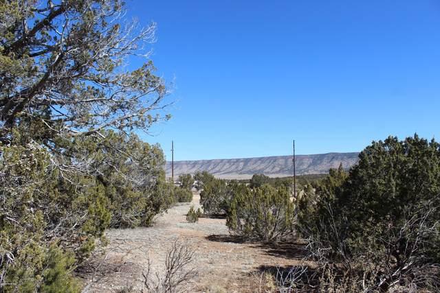 56596 Bridge Canyon Parkway, Seligman, AZ 86337 (#1028593) :: HYLAND/SCHNEIDER TEAM