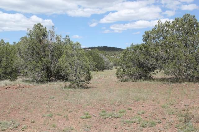 2202 Rincon Drive, Ash Fork, AZ 86320 (#1028858) :: HYLAND/SCHNEIDER TEAM