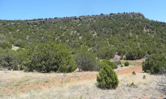 9 Lot B Our Street, Seligman, AZ 86337 (#1028871) :: West USA Realty of Prescott