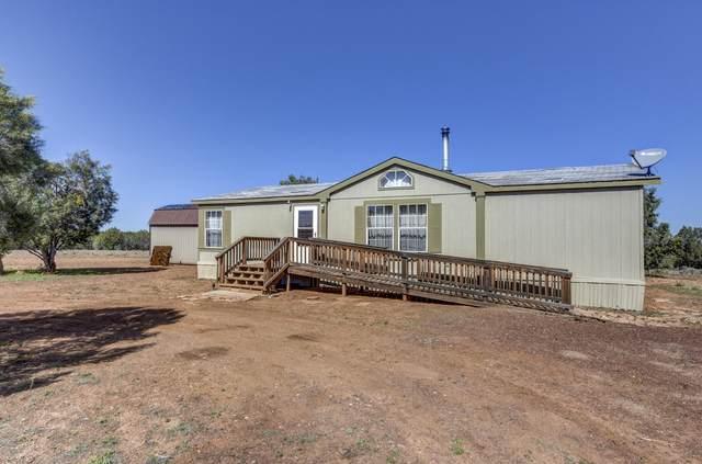 42650 N Wayne Road, Ash Fork, AZ 86320 (MLS #1029295) :: Conway Real Estate