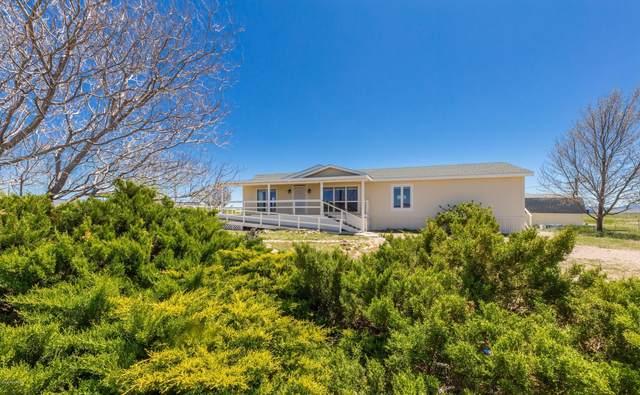 8565 E Dog Ranch Road Road, Prescott Valley, AZ 86315 (#1029318) :: Shelly Watne