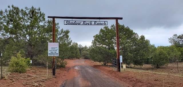 Lot 75 Remember Me Road, Seligman, AZ 86337 (MLS #1029575) :: Conway Real Estate