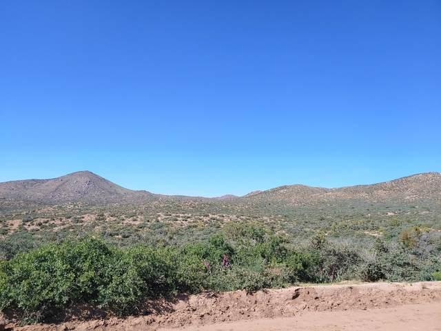 Lot 40&51 Bogles Ranch Road, Wikieup, AZ 85360 (#1029578) :: Shelly Watne