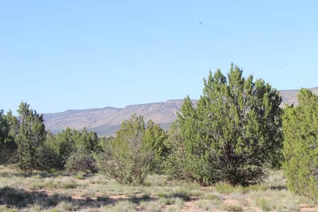 Lot 1244c Shadow Mountain Parkway, Seligman, AZ 83667 (#1029626) :: Prescott Premier Homes | Coldwell Banker Global Luxury