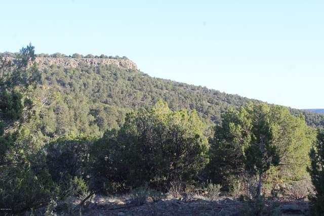 Lot 7 Shadow Rock Ranch, Seligman, AZ 86337 (MLS #1029628) :: Conway Real Estate