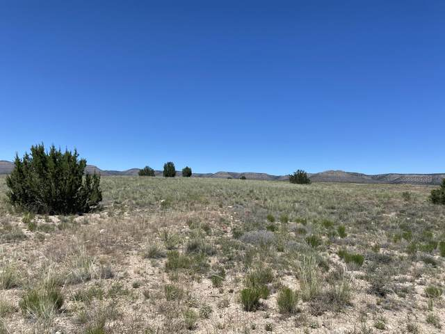 0 Milk Ranch Lot E, Paulden, AZ 86334 (#1030009) :: West USA Realty of Prescott