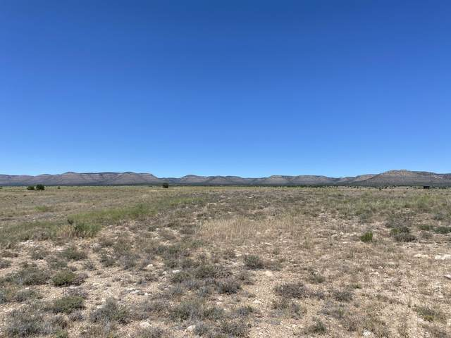0 Milk Ranch Lot F, Paulden, AZ 86334 (#1030010) :: West USA Realty of Prescott