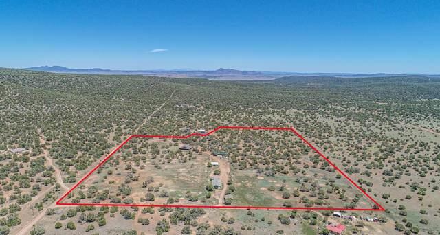 33425 W Cowboy Clint Way, Seligman, AZ 86337 (#1030019) :: Prescott Premier Homes | Coldwell Banker Global Luxury