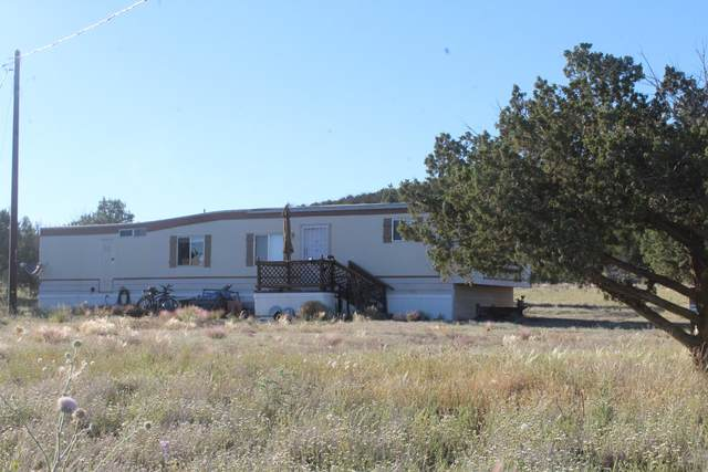 3314 N Highview Drive, Ash Fork, AZ 86320 (#1030033) :: West USA Realty of Prescott