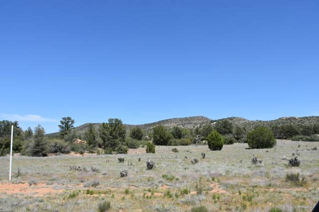 4990 W Sterling Ranch Road, Prescott, AZ 86305 (MLS #1030043) :: Conway Real Estate