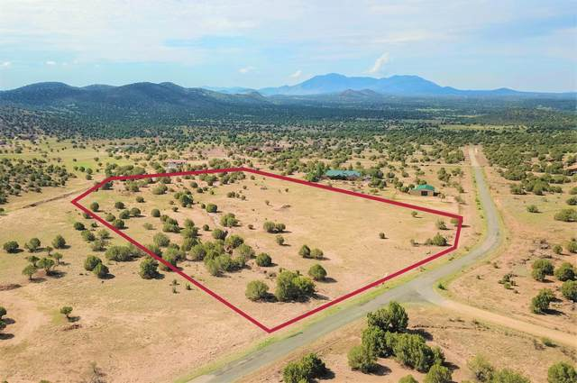 4501 Dillon Wash Road, Prescott, AZ 86305 (MLS #1030073) :: Conway Real Estate