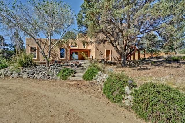 17129 Buckhorn Drive, Peeples Valley, AZ 86332 (#1030146) :: West USA Realty of Prescott