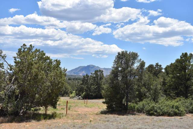 15864 N Silent Moon Lane, Prescott, AZ 86305 (MLS #1030162) :: Conway Real Estate