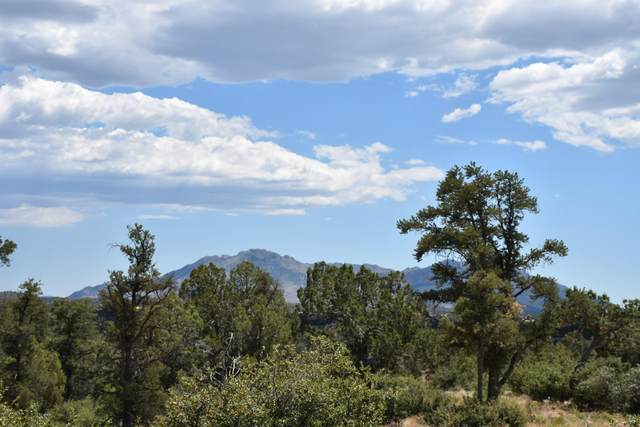 15955 N Kenobi Trail, Prescott, AZ 86305 (MLS #1030164) :: Conway Real Estate