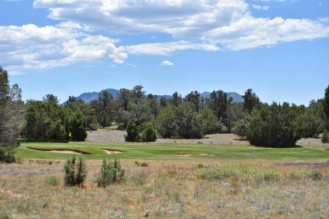 5785 W Maddie Lane, Prescott, AZ 86305 (MLS #1030165) :: Conway Real Estate