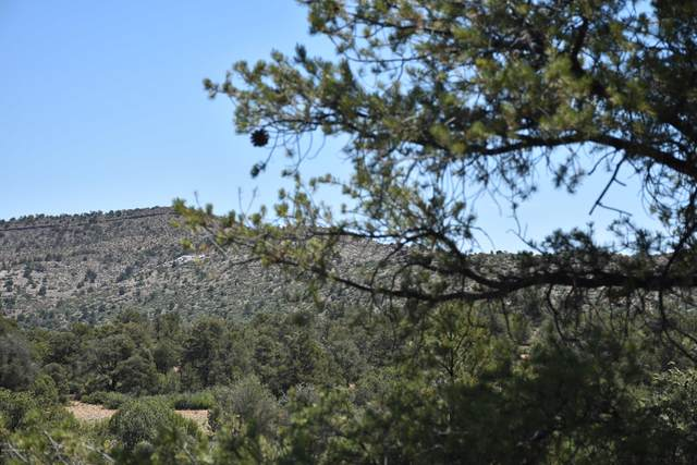 15751 N Molly Way, Prescott, AZ 86305 (MLS #1030173) :: Conway Real Estate