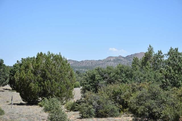 5092 W Ethan Trail, Prescott, AZ 86305 (#1030175) :: Shelly Watne