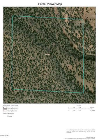 0 Partridge Creek, Ash Fork, AZ 86320 (#1030398) :: West USA Realty of Prescott