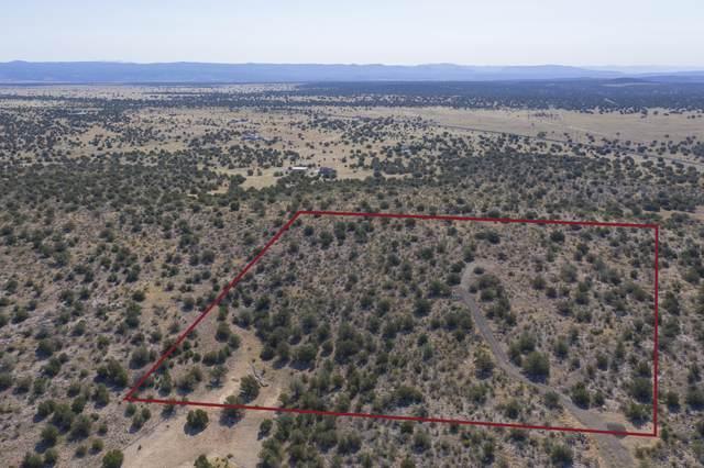0 Pointer Trail, Paulden, AZ 86334 (#1030718) :: West USA Realty of Prescott