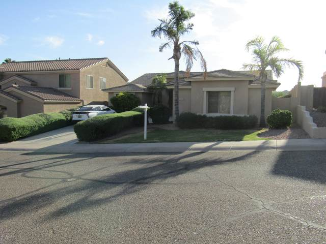 25806 N Singbush Loop, Phoenix, AZ 85083 (#1031128) :: West USA Realty of Prescott