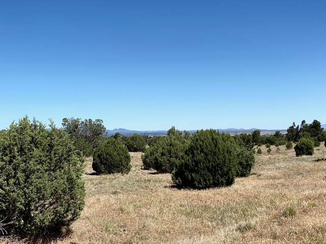 0 N Puntenney Road, Prescott, AZ 86305 (MLS #1031654) :: Conway Real Estate