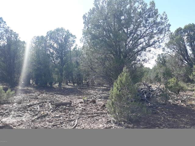 156 Lot Off Rattlesnake, Ash Fork, AZ 86320 (#1031670) :: West USA Realty of Prescott