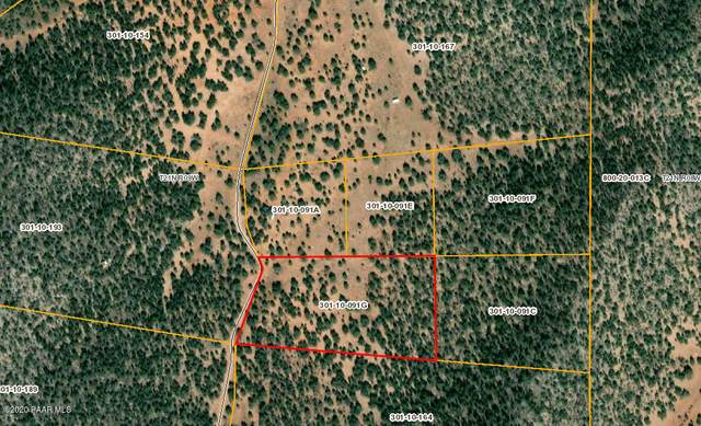277 G Sierra Verde Ranch, Seligman, AZ 86337 (MLS #1031674) :: Conway Real Estate