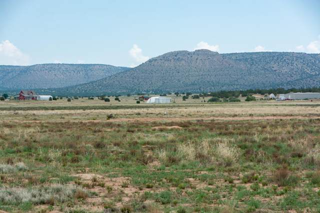 259xx N Feather Mountain Road, Paulden, AZ 86334 (#1031701) :: West USA Realty of Prescott