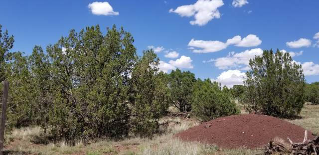 3511 Hillside Road, Ash Fork, AZ 86320 (#1031856) :: West USA Realty of Prescott