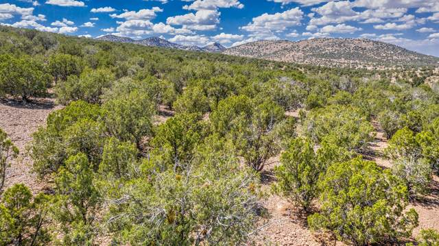 3993 W Cedar Heights Road, Chino Valley, AZ 86323 (MLS #1031950) :: Conway Real Estate