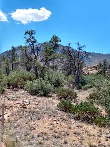 4695 W Phantom Hill Road, Prescott, AZ 86305 (#1032013) :: Shelly Watne