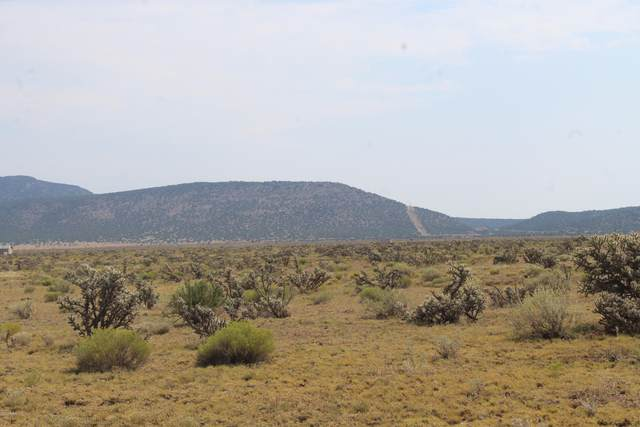 Lot 1434 Sierra Verde Ranches, Seligman, AZ 86337 (#1032213) :: West USA Realty of Prescott