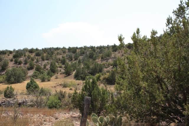 1901 E Prescott Ranch Road, Paulden, AZ 86334 (#1032342) :: West USA Realty of Prescott