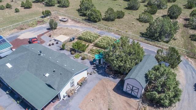 48757 N Anvil Rock Road, Seligman, AZ 86337 (#1032548) :: Prescott Premier Homes | Coldwell Banker Global Luxury