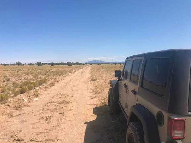 290 Arizona Road, Ash Fork, AZ 86320 (#1032720) :: West USA Realty of Prescott
