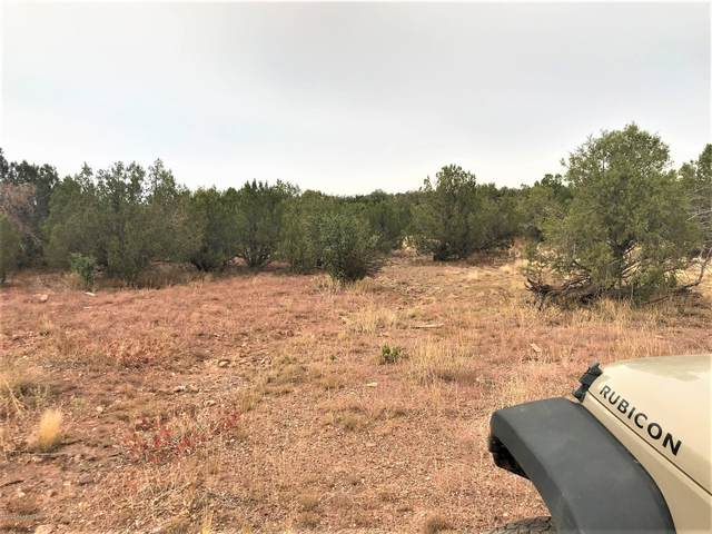 1439 W Fairview Drive, Ash Fork, AZ 86320 (#1032818) :: West USA Realty of Prescott