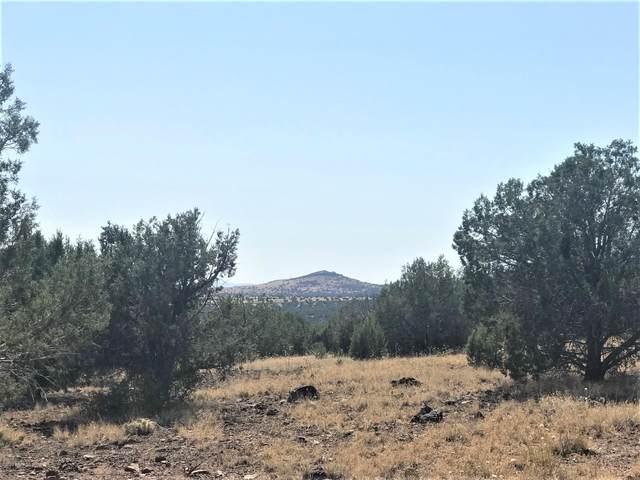 9825 W Gleed Station Road, Ash Fork, AZ 86320 (#1032832) :: West USA Realty of Prescott