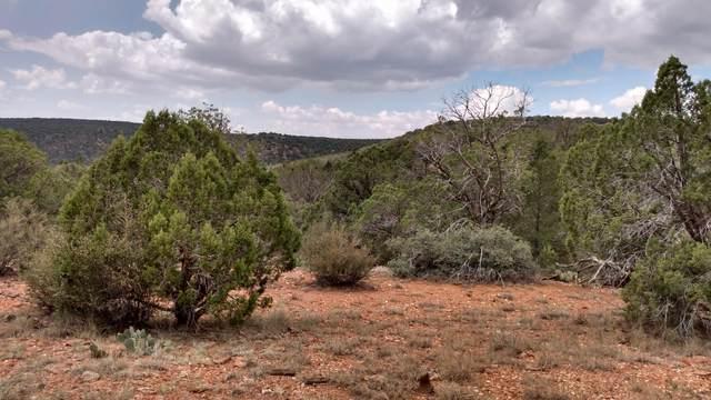 Lot 55 Shadow Rock Ranch, Seligman, AZ 86337 (#1033000) :: Shelly Watne