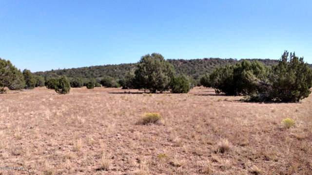 Tbd Midnight Sky, Seligman, AZ 86337 (MLS #1033160) :: Conway Real Estate