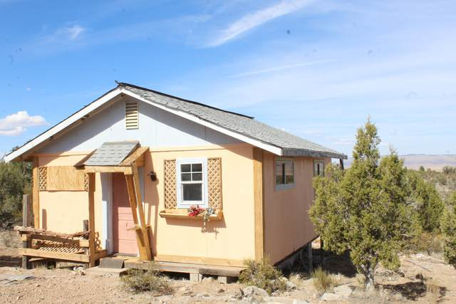 33138 W Frontera Road, Seligman, AZ 86337 (MLS #1033434) :: Conway Real Estate
