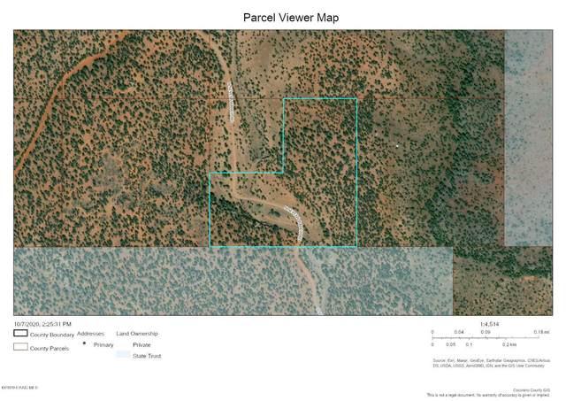 812 Westwood Ranch, Ash Fork, AZ 86320 (#1033457) :: Shelly Watne